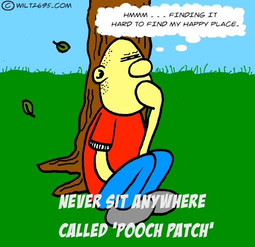 poopch patch.png