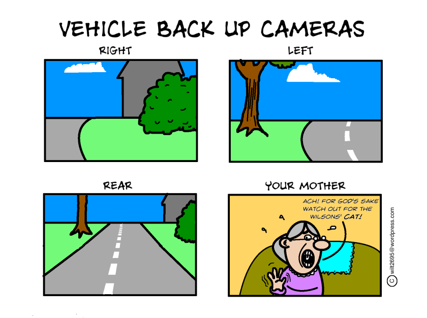 BACK UP CAMS.png
