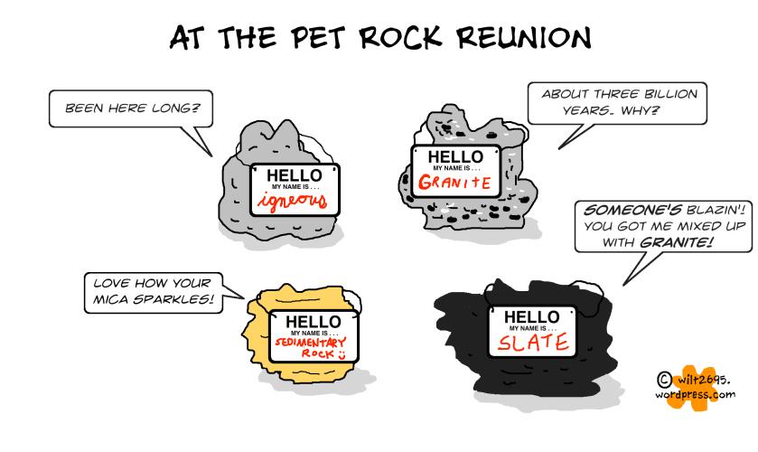 PET ROCK REUNION.png