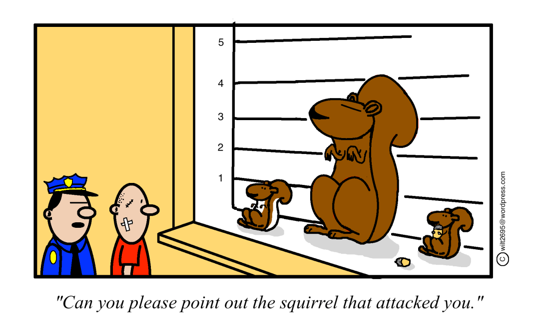 squirrel line up.png