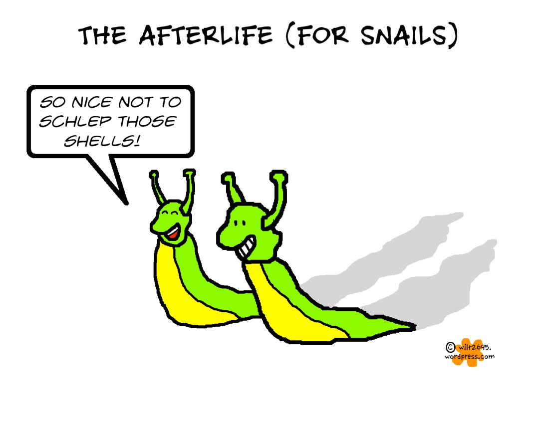AFTERLIFE FOR SNAILS.png