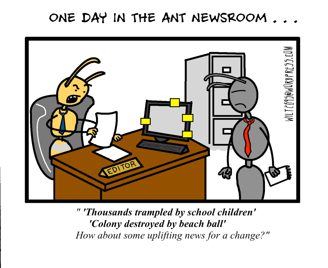 ANT NEWS.png